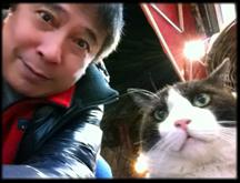 別府猫4.jpg